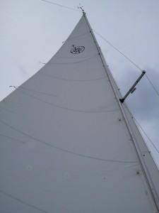 New Main Sail