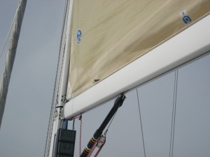 Bird sitting on the foot of the Main Sail